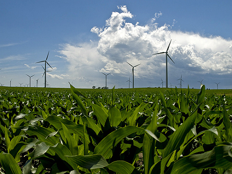 Fix For Illinois Renewable Energy Law Faces Utility