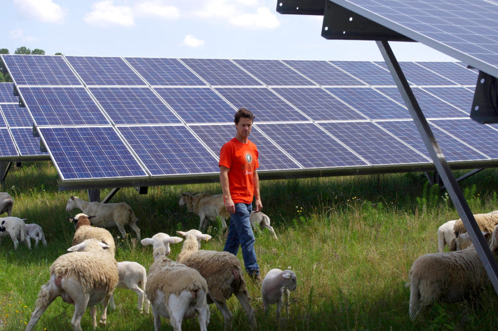 Farmers Experts Solar And Agriculture Complementary